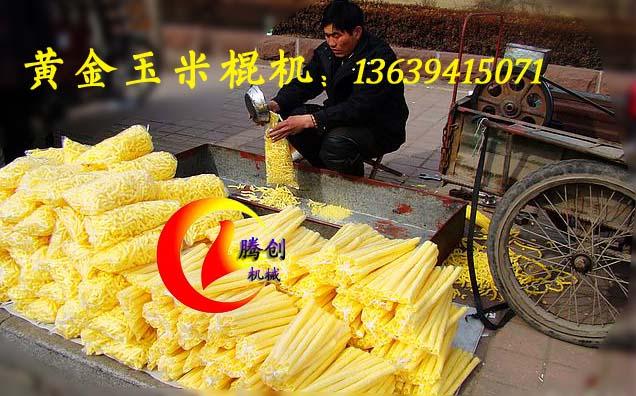 玉米谷物膨化机